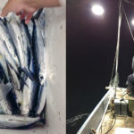 "No.5 中浜アゴすき体験 ~吉喜丸~</br>-Flying Fish-Scooping on ""Yoshikimaru"", a Local Fishing Boat-"